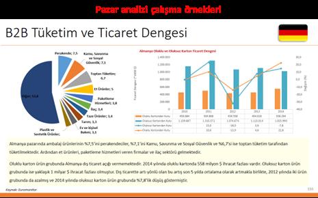 B2B Tüketim ve Ticaret Dengesi - Pazar Analizi Çalışma Örnekleri