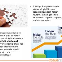 OlgunCelik_Page_10