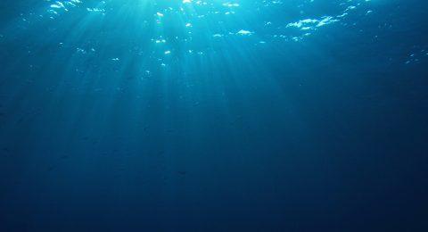 Denizin Altında Verimli Ürün Tasarımı